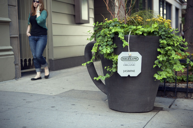 Cleanvertising Green Marketing